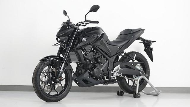 Harga Motor Touring Yamaha MT-25