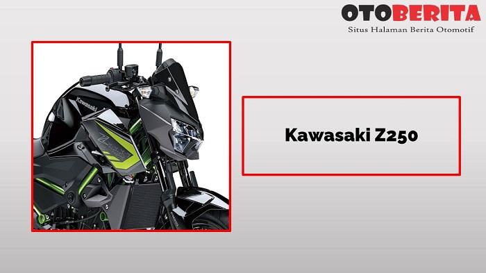 Kawasaki Z250 si motor 2 silinder murah di Indonesia